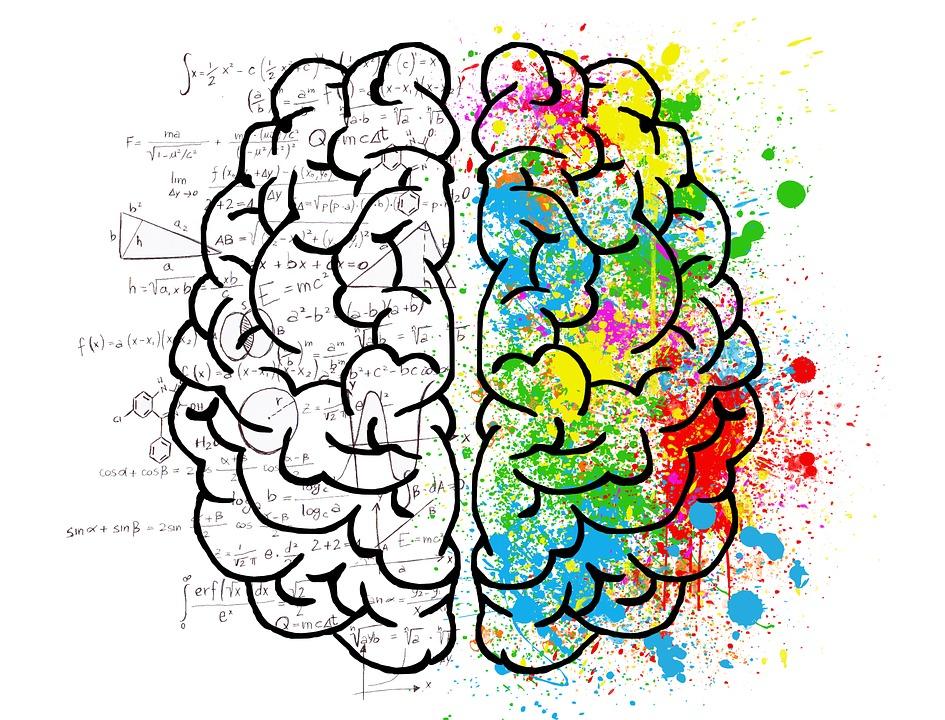 Витамины для мозга воздействие на память и ум
