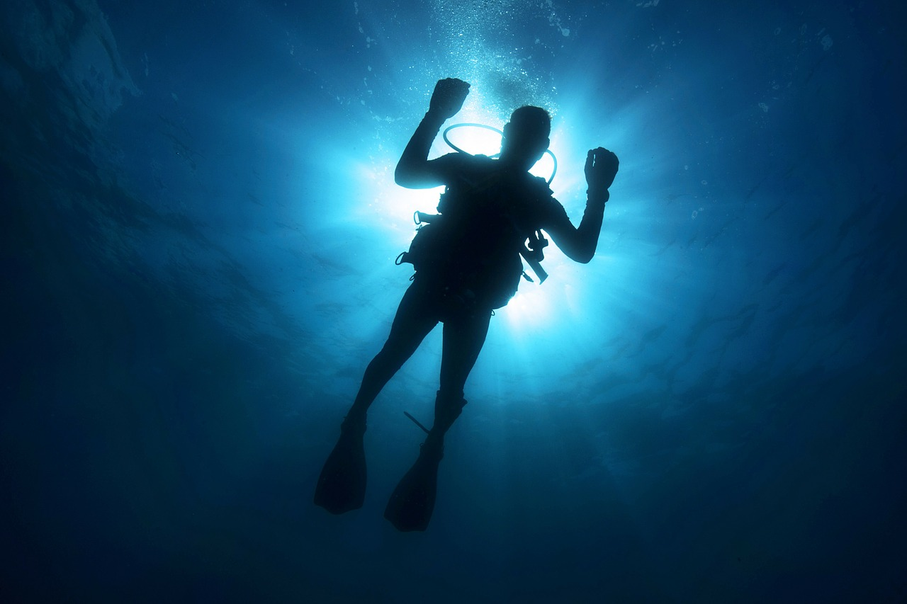 Как выбрать костюм для подводной охоты? Виды дайверской амуниции. Критерии покупки идеального костюма для дайвинга.