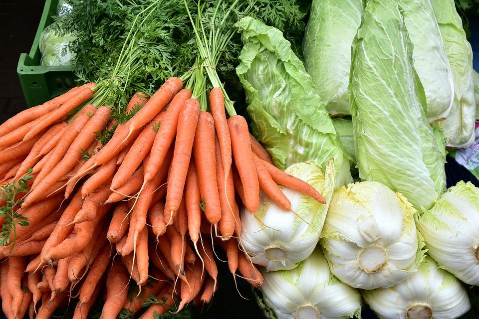 Как выбрать измельчитель для овощей и нарезки кубиками