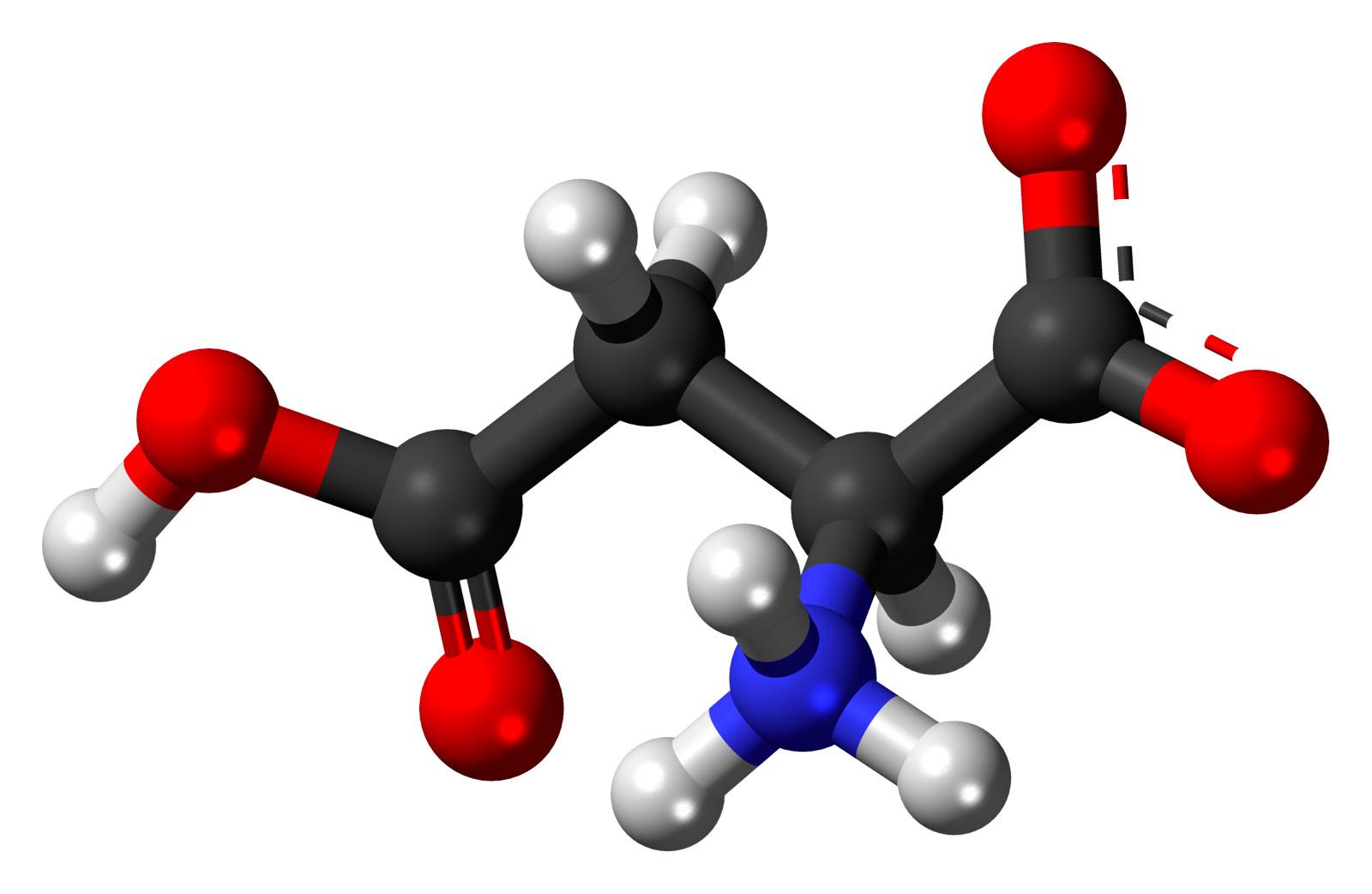 Что лучше: бцаа или аминокислоты?