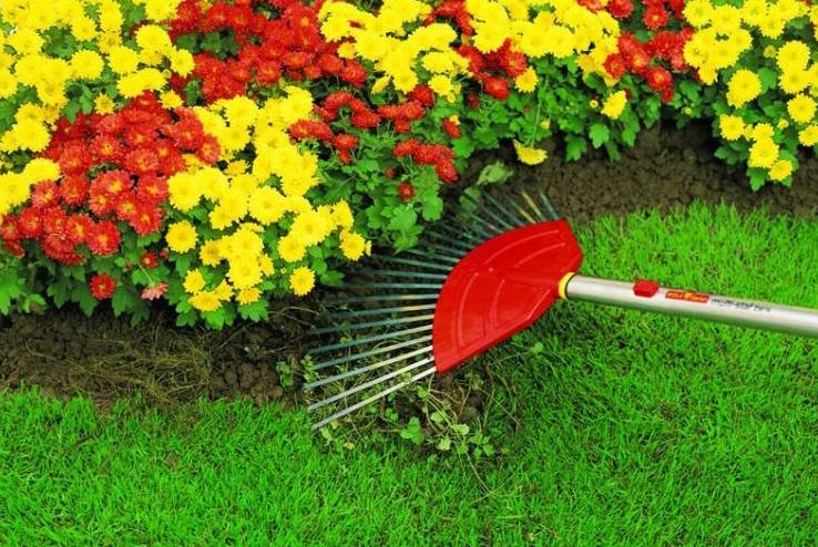 Грабли садовые